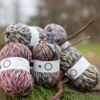 West Yorkshire Spinners Signature 4ply Country Birds