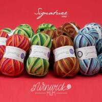 West Yorkshire Spinners Signature 4ply Winwick Mum Seasons